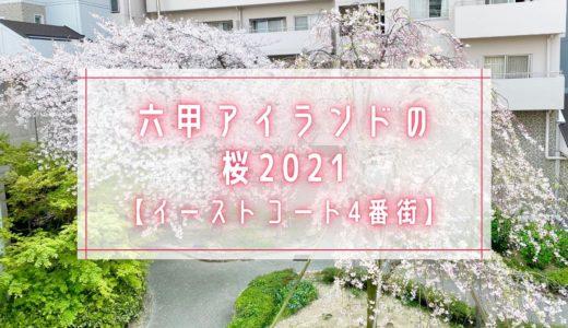 【六甲アイランドの桜2021】イーストコート4番街|シダレザクラ(枝垂れ桜)