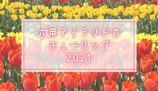 【六甲アイランドの花2021】チューリップ畑|イベント広場・芝生広場向かい